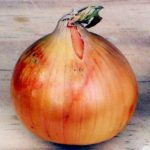 Client as Onion:  Peeling Down To The Core